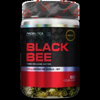BLACK BEE 60 CÁPS - PROBIÓTICA